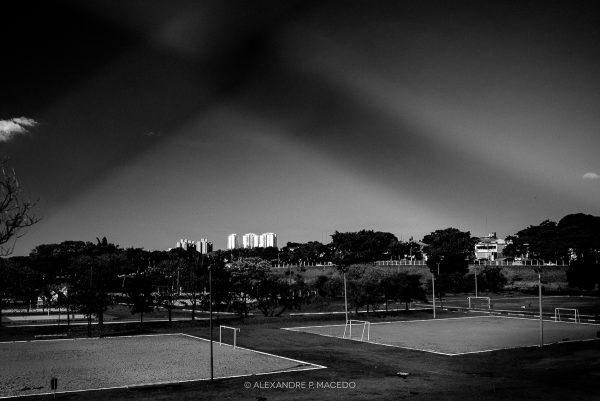 © Alexandre P. Macedo