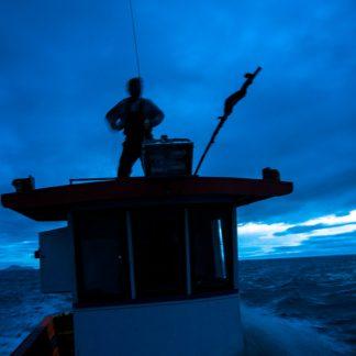 Pesca da Tainha, Florianópolis-SC. Foto: Alexandre Pottes Macedo
